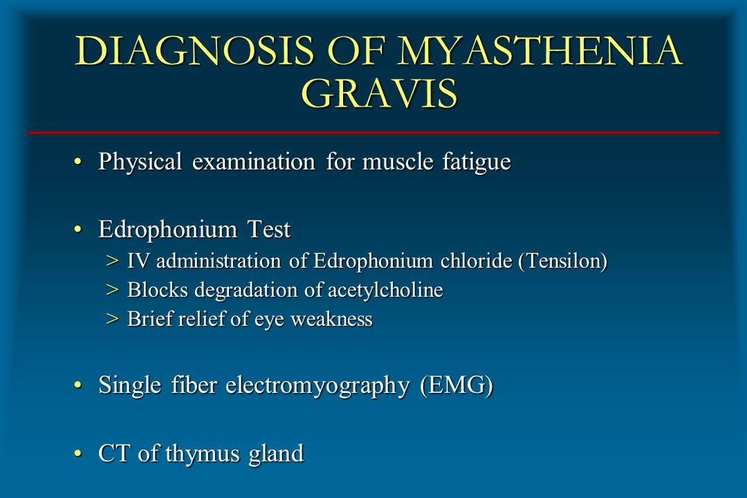 Thymus Gland And Myasthenia Gravis