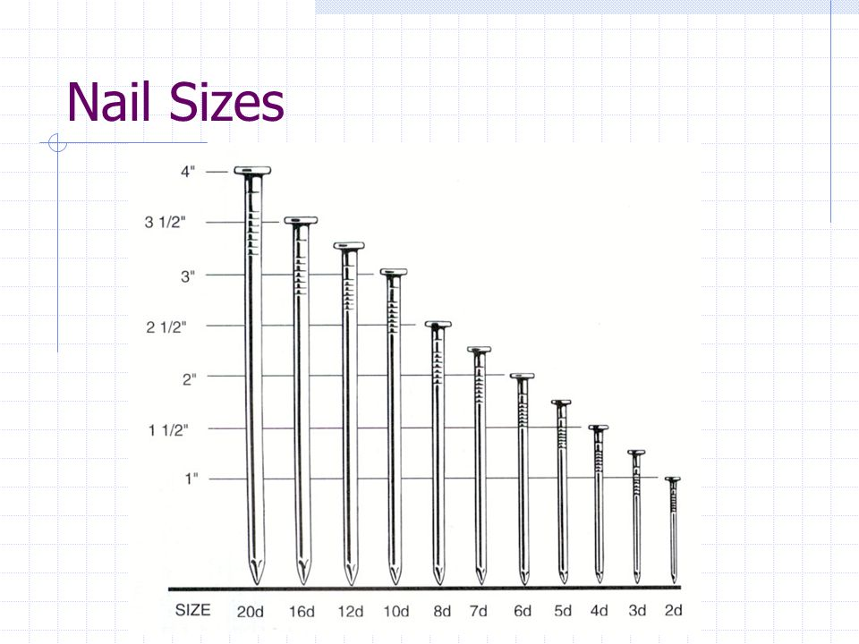 framing nails size | Framess.co
