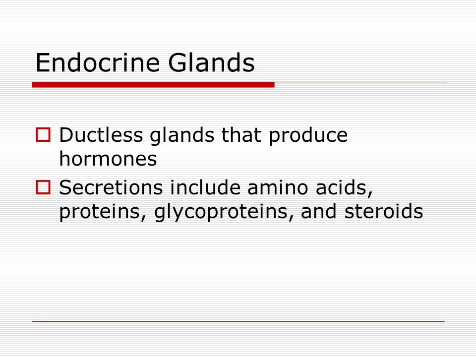 Merocrine Glands Secrete Their Products