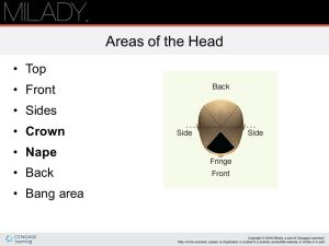 Chapter 16 Haircutting NOTE: This chapter of the Instructor Support Slides covers the content