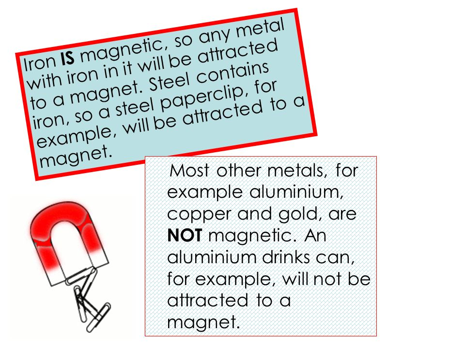 Attracted Tin Can Magnet