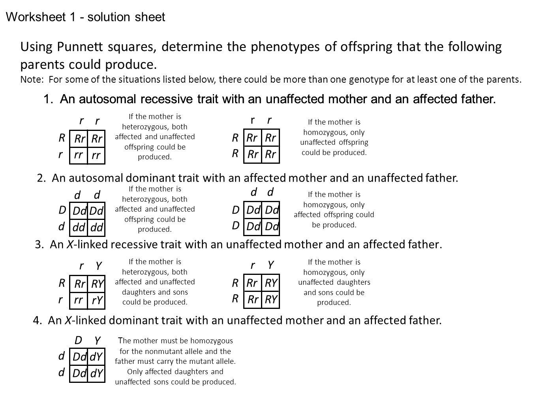 Worksheet Dominant And Recessive Traits Worksheet Grass