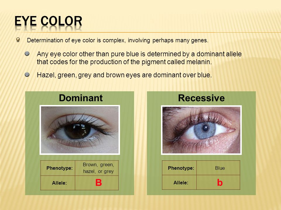 Recessive Traits Eye Color