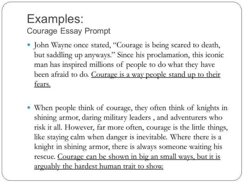 Courage essay ideas mistyhamel