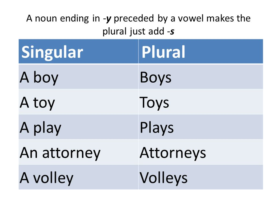 Image Result For Plural Of Attorneys