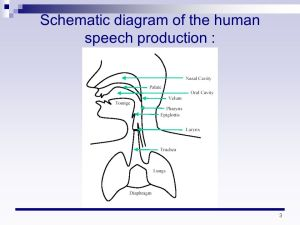 Speech Generation and Perception  ppt download