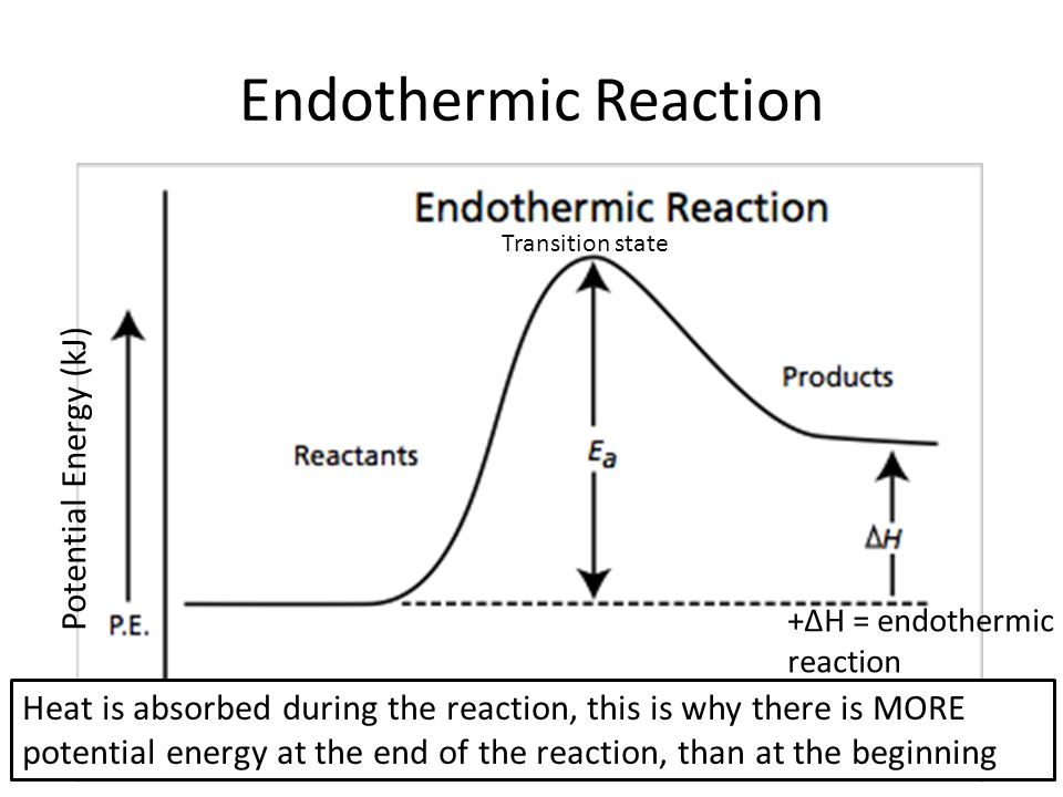 Energy Diagram Endothermic And Exothermic Reactions With