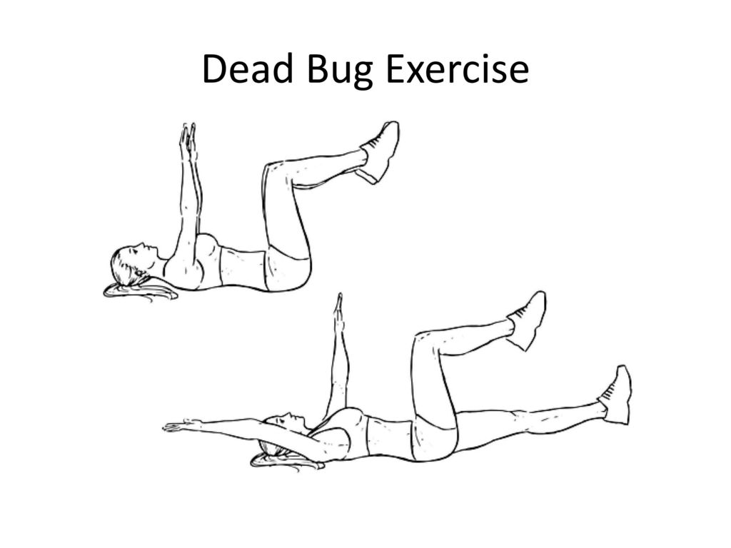 The Utic Exercises For Low Back Pain An Overview