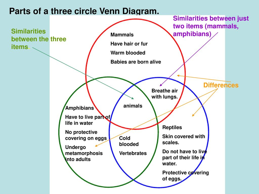 Venn Diagram Venn Diagrams Are Tools Used To Describe And