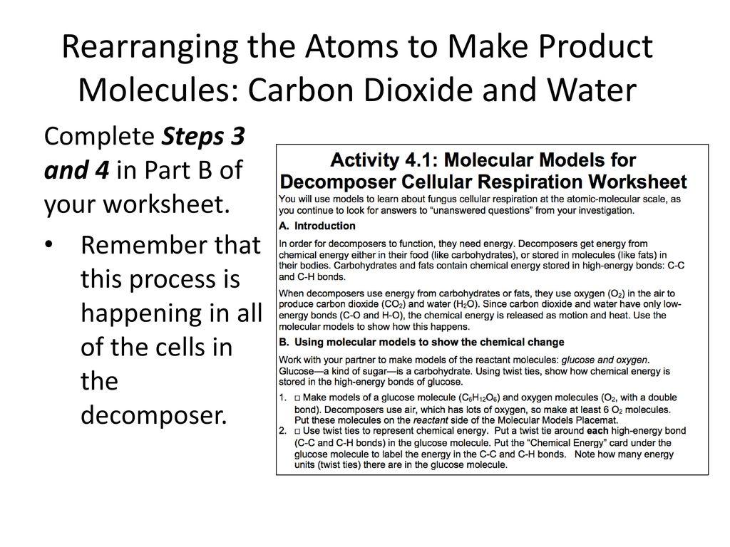 Rearranging Atoms Worksheet Answers