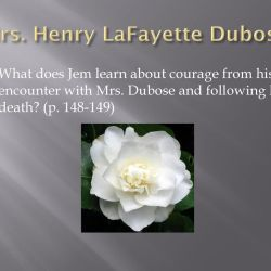 who is mrs henry lafayette dubose