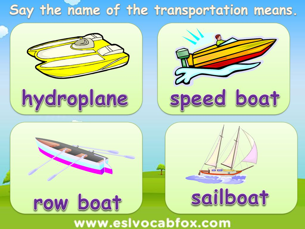 Transport Ppt Download