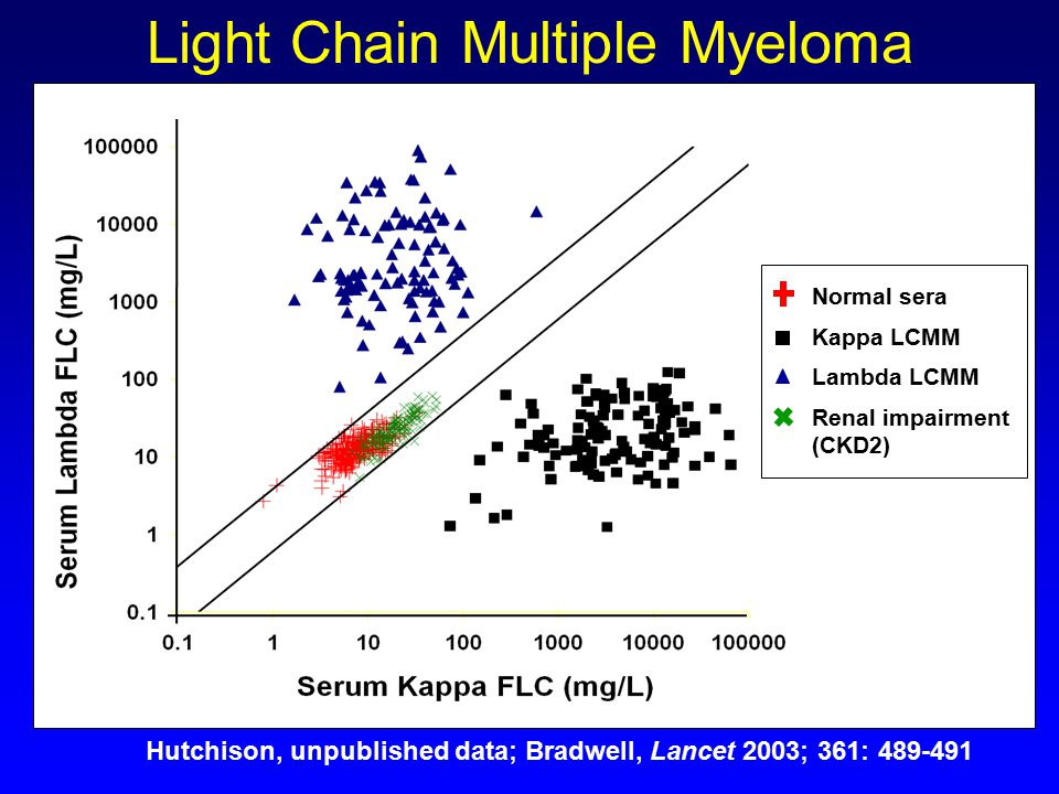 International Consensus On Serum Free Light Chain Analysis Ppt