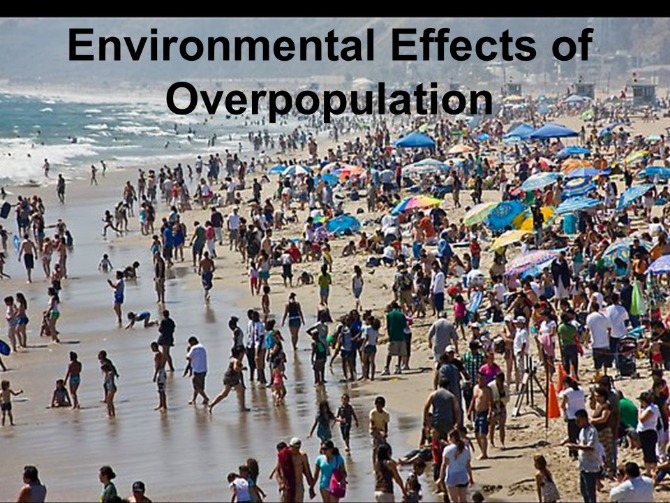 Image result for What are overpopulation and its effect on the environment?