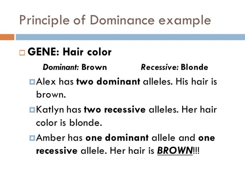 What Hair Colors Are Dominant And Recessive Todayss