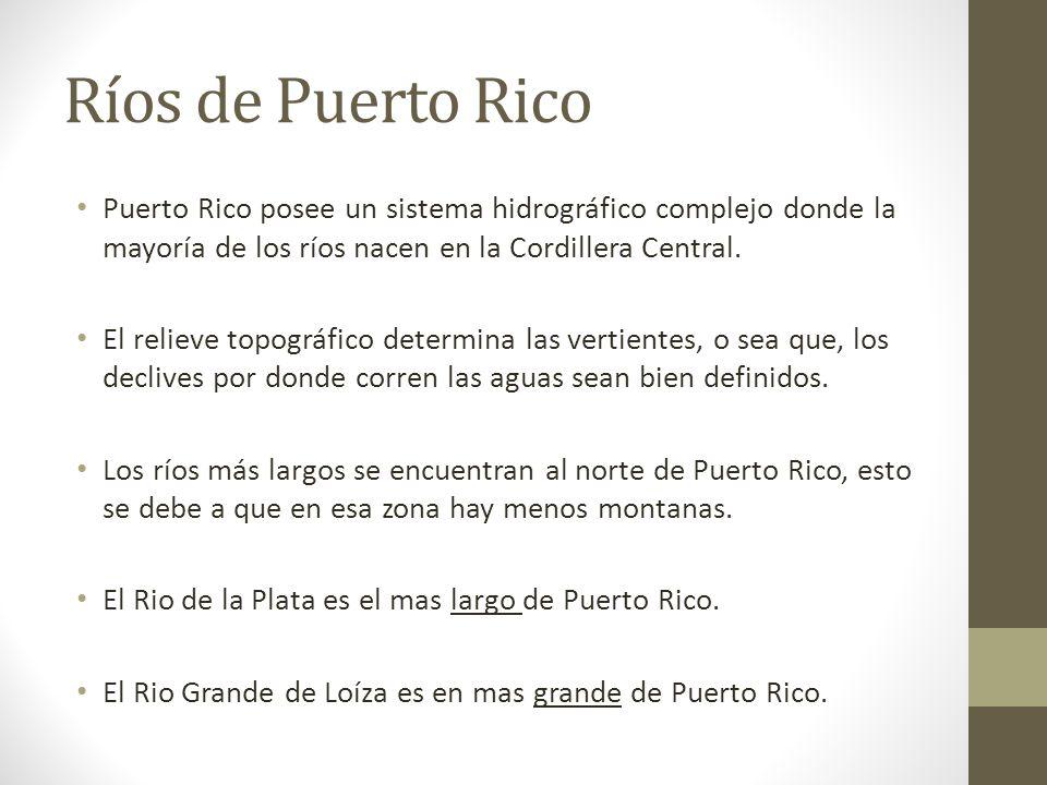 El Parque El La Yunque Cordillera Nacional Central Puerto Map Rico