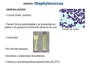 COCOS GRAM POSITIVOS Microbiología Médica I Tema # ppt