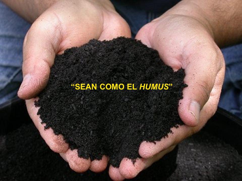 Resultado de imagen para FOTO DE LA HUMILDAD EN LA MASONERIA