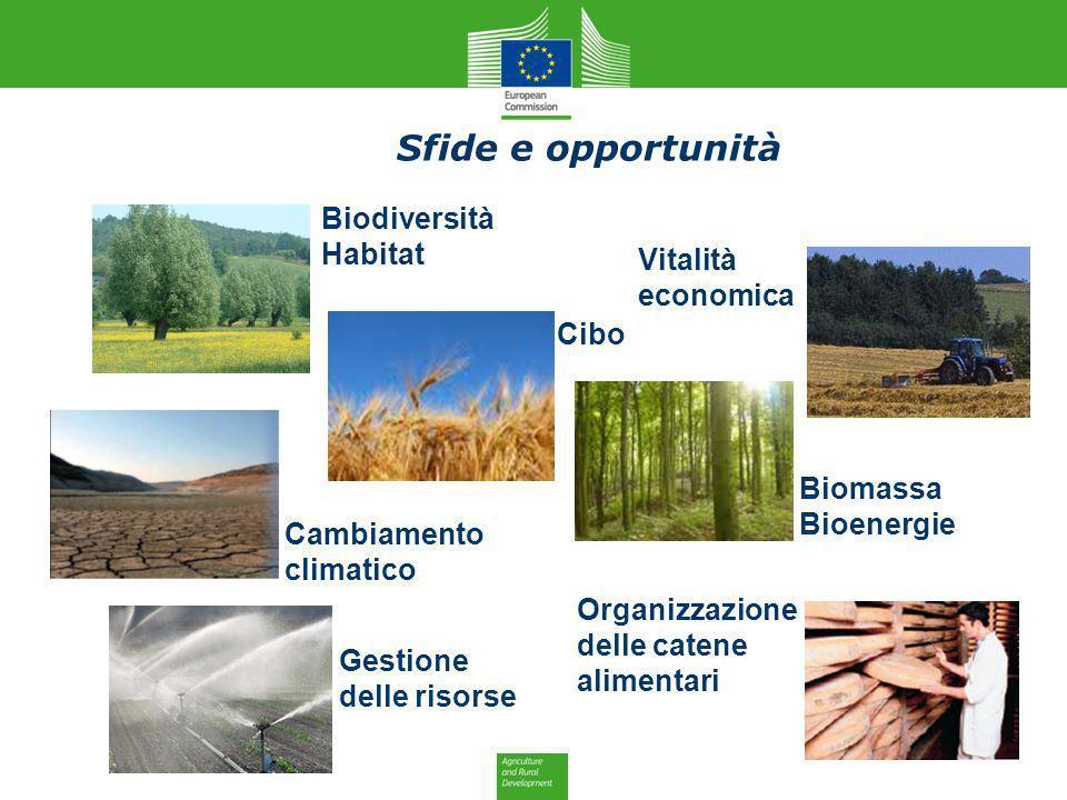 Risultati immagini per Agricoltura e cambiamenti climatici: sfide e opportunità
