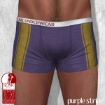 Slink - Male Boxers - purple stripe