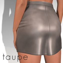 Leather Mini Taupe_1