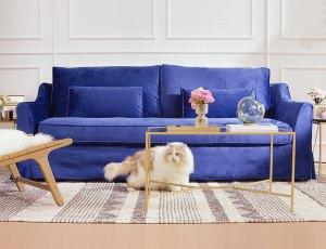 Blue velvet sofa in living room.