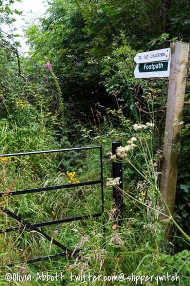 Some of the footpaths were a bit overgrown