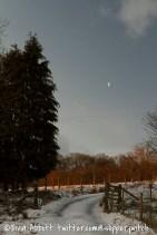 snowy day-14