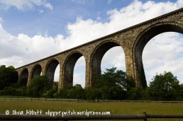viaduct (7 of 14)