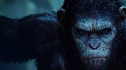 O planeta dos macacos o confronto