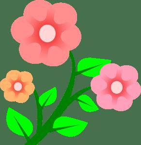 Peileppe-3-flowers-300px