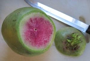 Watermelon Radish Cut