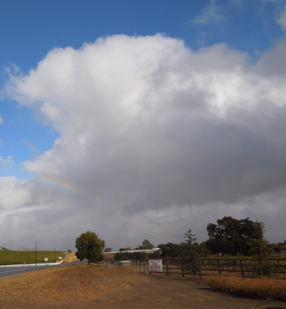 A Rainbow Over Wine Country