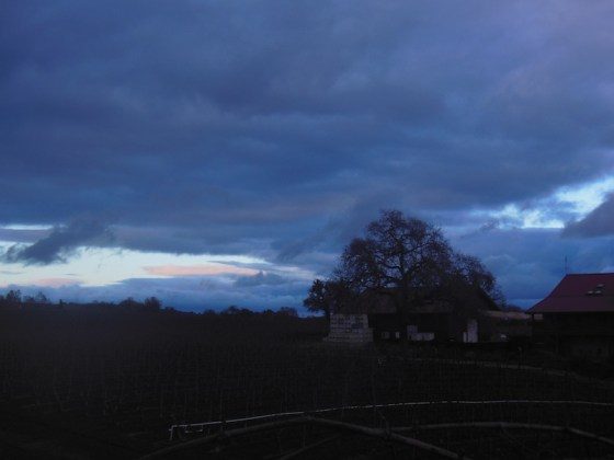 Sun setting behind Zenaida Winery at Dusk