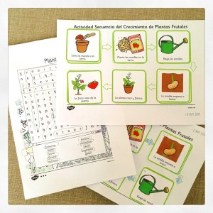 Twinkl worksheets to support our botany topic and vegetable garden activities.