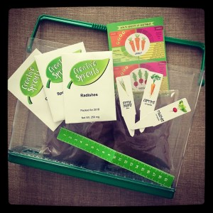 Grow Your Own Vegetable Garden kit by Creative Sprouts.