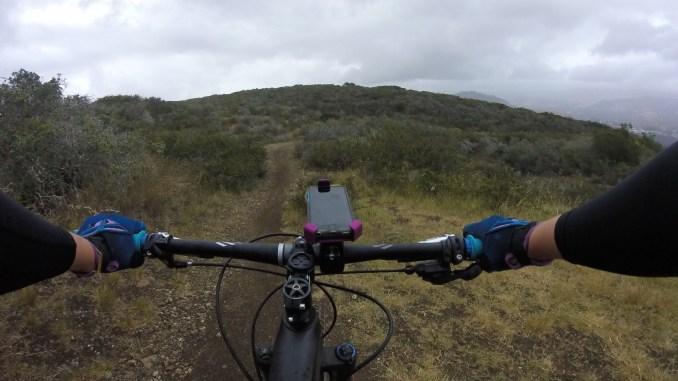 Mob Mount on Mountain Bike