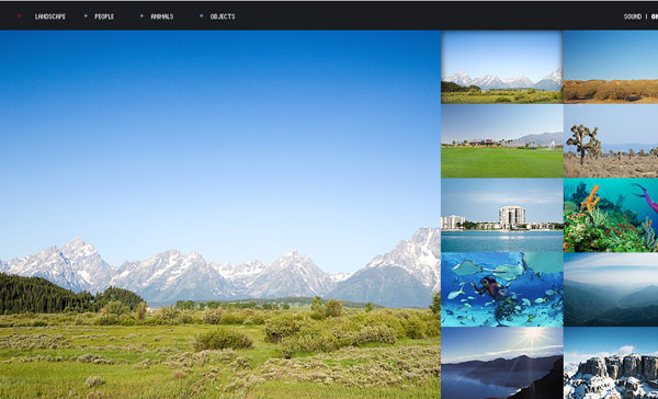 Flash Template Free. all premium wordpress themes website with ...