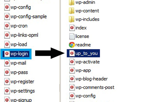 ftp wordpress folder