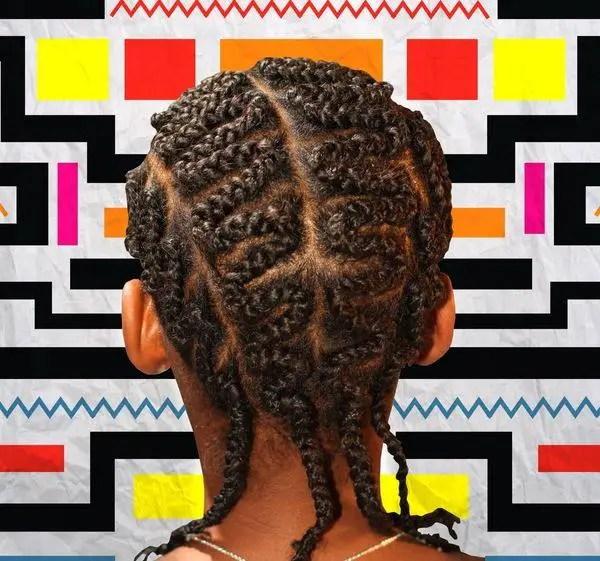 Zig Zag Braided Hairstyle