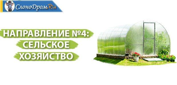 Бизнес-идеи - сельское хозяйство