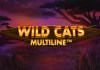 Wild Cats Multiline by Red Tiger Logo