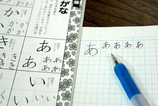 日本語化されているので安心