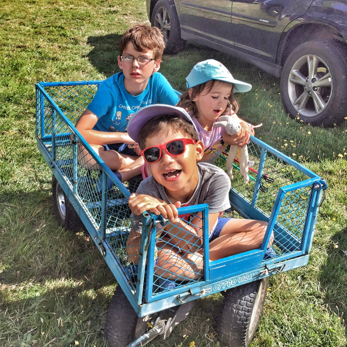 Five went to Camp Bestival - and declared it a success