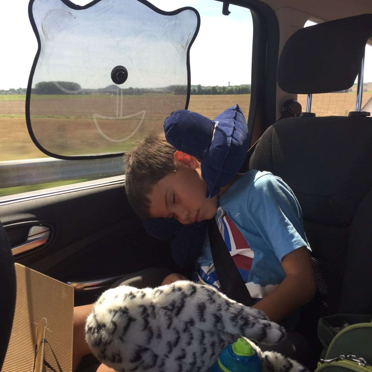 6 top tips for surviving long road trips with kids