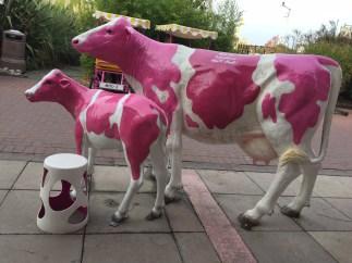butlins-cows