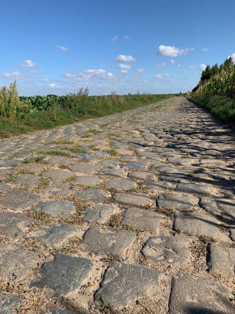 Carrefour de l'Arbre Paris-Roubaix cobbles