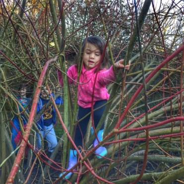 Kara tree climbing