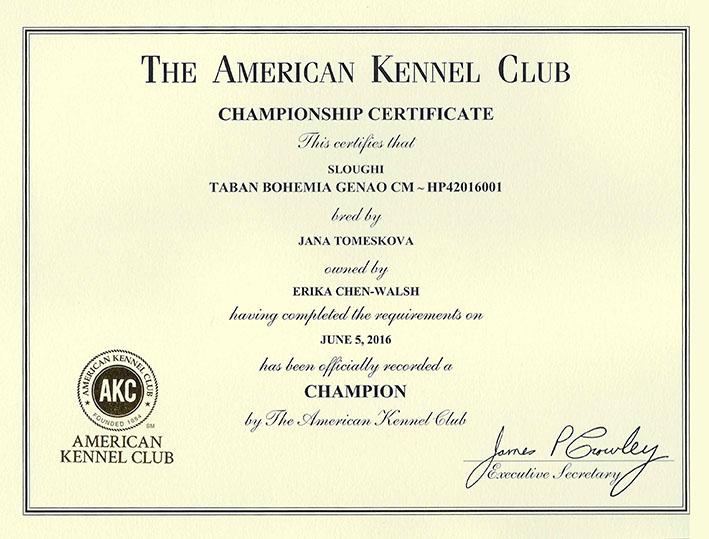 AKC CH Certificate Toby web size