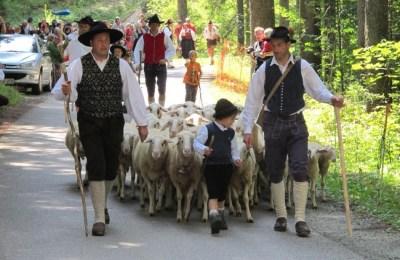 Shepherds' Festival Jezersko